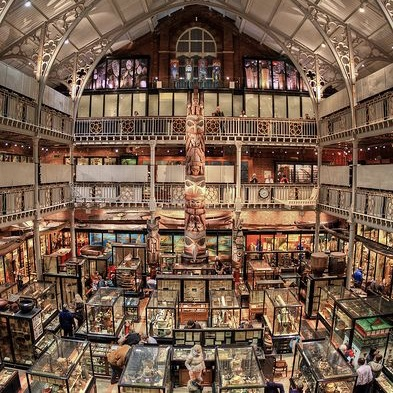 A museum displaying ethnographic objects in Oxford